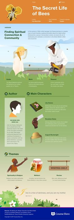 The Secret Life of Bees Infographic