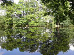 Etang de Rudelande Forêt Perche Trappe  http://unweekenddansleperche.fr/