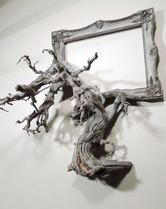 Artist Darryl Cox melds fallen branches and old picture frames into Fusion Frames Driftwood Frame, Driftwood Crafts, Driftwood Furniture, Old Picture Frames, Old Frames, Picture Tree, Marco Diy, Cadre Photo Diy, Frame Crafts