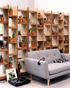 room divider shelves with plants and terracotta