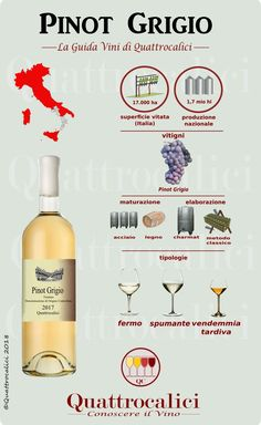 Wine Dispenser - Need Good Information About Wine Look Here! Wine Infographic, Wine Dispenser, Wine Gift Baskets, Wine Guide, Types Of Wine, Wine Reviews, Italian Wine, In Vino Veritas, Wine And Beer
