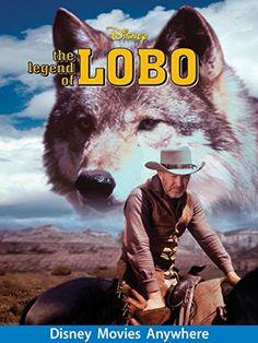 The Legend Of Lobo ** Visit the image link more details.