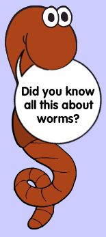 "Did you know all this about worms? Another stellar interactive from the Illinois Extension featuring Herman (pictured,) and his adventures as  ""one of nature's top soil scientists."""