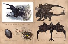 william o'connor dragons - Google Search