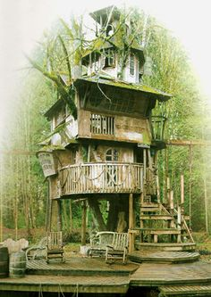 20 Cool Treehouses We've Always Wanted   SMOSH