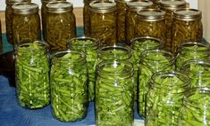 recettes de conserves maison originales bocaux haricots verts sel
