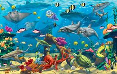 Ocean Adventures Jigsaw Puzzle | Kid's Puzzles | Vermont Christmas Co. VT Holiday Gift Shop