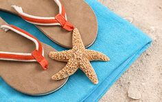 What to Pack for the Beach (Courtesy of Shutterstock.com)