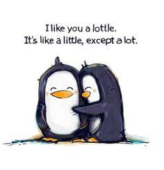 @Samuel Goh a lottle love!