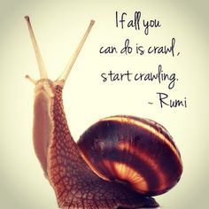 I love Rumi quotes