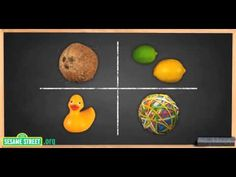 """This is a super cute little science video to introduce """"hypothesis"""" to kindergarteners! Sesame Street Science: Sink or Float? - START THE EXPERIMENT HERE 1st Grade Science, Primary Science, Stem Science, Elementary Science, Science For Kids, Science Videos, Science Resources, Science Projects, Science Activities"""