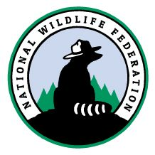 Native Plants (By Category) - Flowers and Grasses - Native Plants Finder Build A Bat House, Squirrel Appreciation Day, Squirrel Food, Camping Activities, Steam Activities, Spider Plants, Arctic Animals, Ferrari Logo, How To Attract Birds