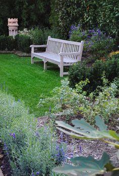 Loi's lavender & blue garden - DC