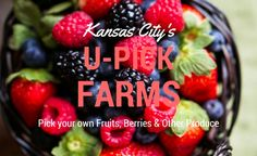 U-Pick Berry Patches and Fruit Orchards in the Kansas City Area - KC Going Places - Spring-Summer 2015 - Kansas City, KS