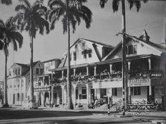Jodenbreestraat met palmbomen. Rechts Handelsinstituut Paramaribo. Datum: Locatie: Paramaribo, Suriname Vervaardiger: Inv. Nr.: 20-101 Fotoarchief Stichting Surinaams Museum