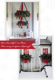 Wreaths made from foam wreath forms, evergreen clippings, and satin red ribbon! I love this <3