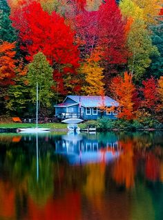 fall scenery Autumn lake cottage- stunning colors, great inspiration for new Fall collections Autumn Lake, Autumn Scenery, Autumn Cozy, Autumn Forest, Fall Pictures, Pretty Pictures, Beautiful World, Beautiful Places, Trees Beautiful
