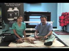 Dawg Business: It's Your Dog's Health!: Cruciate Ligament (ACL/CCL) Surgery Post-Op Care: Example Plan