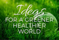 Sustainability starts at home, but it doesn't end there. If we hope to have a healthy, happy world for generations to come, we need to make changes now in how we manage our communities and our countries. Here are some ideas about how we can do that.
