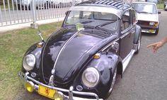 VW 74
