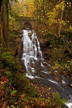 Stone Bridge Waterfall, Clyde Valley, Scotland    photo via earths