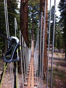 treetop adventure park tahoe city, California $50 / person