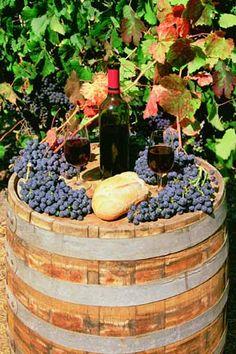 Napa Valley Red Wine On Barrel