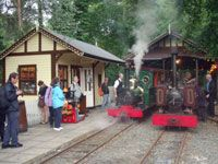Enjoy a memorable journey on the Groudle Glen Railway – the line that goes uphill to the sea!