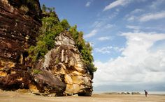 Borneo. This lush island is part Indonesian, part Malaysian.