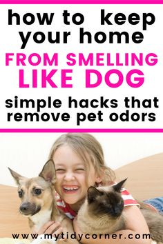 Learn how to remove pet smell out of your house and keep your home from smelling like kennel. Use these simple cleaning hacks and tips to get rid of pet smells e., remove dog smells as well as cat odors on couch, out of furniture and out of carpet. Cat Urine Smells, Dog Smells, Cleaning Dog Pee, Cleaning Hacks, Cleaning Schedules, Cleaning Products, Removing Dog Urine Smell, Remove Dog Odor, Dog Pee Smell