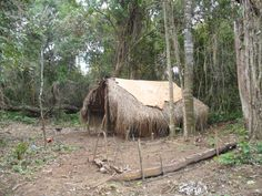 Paraguay Guarani tribes
