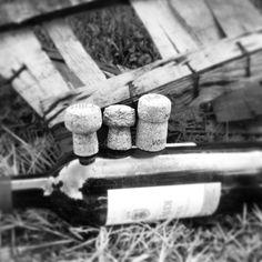 Trois petits #bouchons en #liege en voguant sur leur radeau #bouteille...#Repost from @Stéphane Russeil #vin #planetelige #wine #cork --- Les p'tits bouchons. #ptitsbouchons #instamood #instagood #noir&blanc #black&white #igersniort #igersdeuxsevres #ig_france #igersfrance