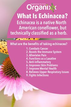 Most of us hear Echinacea and think cold remedy, but did you know it can  help combat cancer, alleviates pain and can even improve your mental  health? For more natural health hacks, please follow the link through and sign up to our Newsletter.
