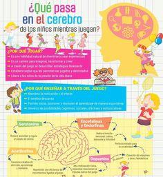 La educación y el cerebro