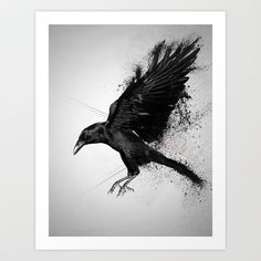 Crow Art Print by Adam Flynn - $15.00