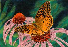 Fritillery Butterfly Art