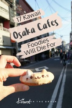There are plenty of Osaka cafes you will find it hard to choose from if you love kawaii stuff and are a foodie in Japan. Here is a really cool selection.