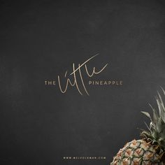 Mel Volkman Brand Identity St. Augustine Graphic Design Web Design Brush Lettering Logo Pineapple Gold