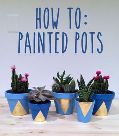 Succulent and Cactus Table Centerpieces using DIY Painted Garden Pots - Tutorial on how to decorate terra cotta pots using spray paint & gold leafing on BigBrownBlog.com.