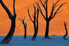 This is not a Painting neither a Photoshop but an unedited Photo taken at 'Dead Vlei' in Namibia - Photography Picks