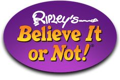 Ripley's Amsterdam will be opening early 2016