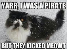 Captain Jackitty
