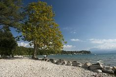 Textures Italy garda lake landscape 17550 | Textures - BACKGROUNDS & LANDSCAPES - NATURE - Lakes | Sketchuptexture