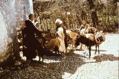 Eselkarawane in Tetuan, 1962 Czychowski/Timeline Images #1960 #60er #60s #Marokko #Morocco #Esel #Nutztier #Nutztiere #Karawane #Lastentier #Karawanen