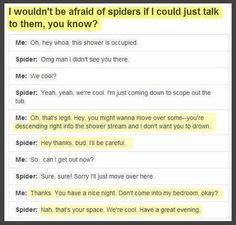wouldn't be so scared of spiders if i could just talk to them