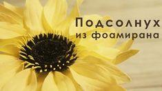 Цветы из фоамирана как сделать подсонлух