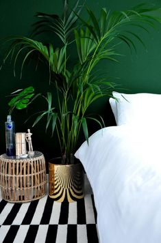 Dark green walls & a bold stripe rug | Image via the Desi Wonder Woman