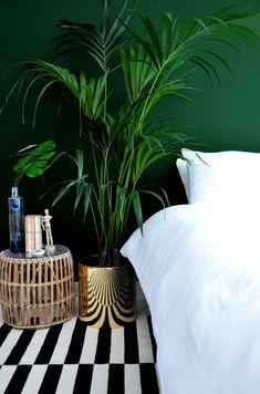Dark green walls & a bold stripe rug | Image via the Desi Wonder Woman