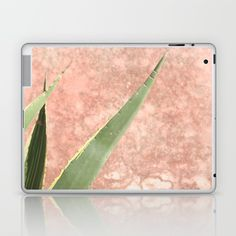 Weathered pink wall and cactus Laptop & iPad Skin