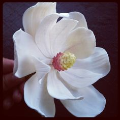 magnolia gumpaste flower - Google Search